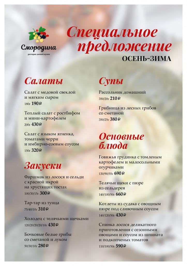 Смородина спец_А4_ноябрь_